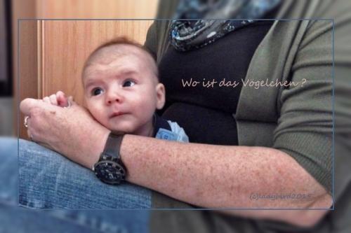 lieblingsbaby-6W-2