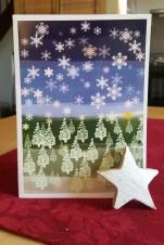 Schneeflocken von Frau Sabienes