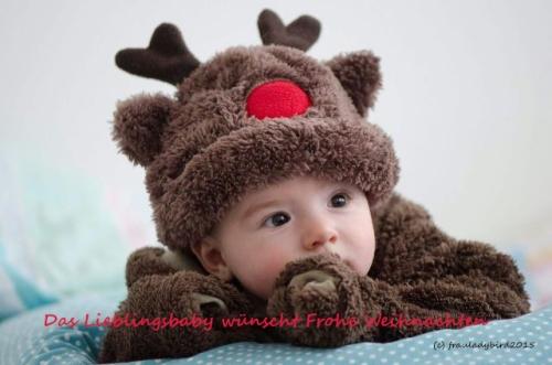 Lieblingsbay-Christmas