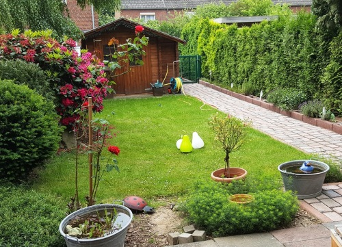 Gartenblick - 29. Mai - 10:30 Uhr