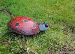 Herr Ladybird im Gras