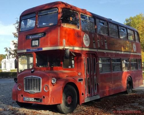 rennbahn_bus