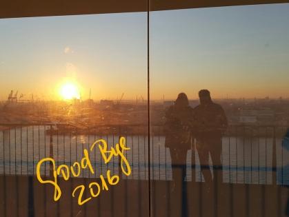 goodbye_2016_1
